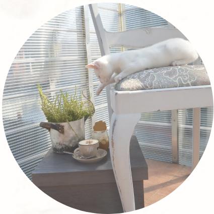 bliźniaki tapicera - designerskie krzesła