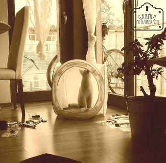 I na koty, które chętnie wskakują w kadr oraz namiotu zdjęciowego : )